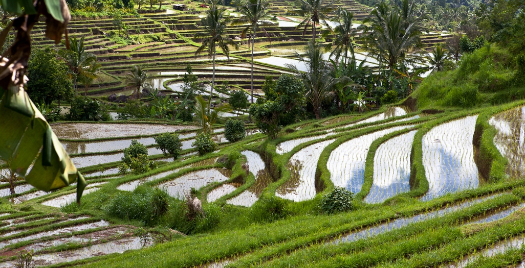 Discover the other side of Bali